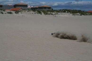 """ Vamos a la Playa "" dixit Righeira My%20Canon%20050"